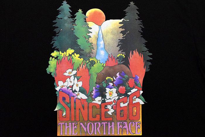 THE NORTH FACEザ ノースフェイスのTシャツ Yosemite Falls12