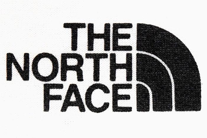 THE NORTH FACEザ ノースフェイスのTシャツ Yosemite Falls07