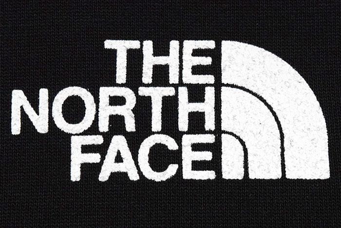 THE NORTH FACEザ ノースフェイスのTシャツ Yosemite Falls08
