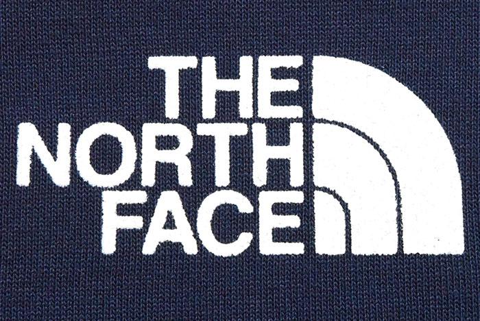 THE NORTH FACEザ ノースフェイスのTシャツ Yosemite Falls09