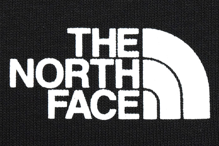 THE NORTH FACEザ ノースフェイスのTシャツ Bandana Square Logo13