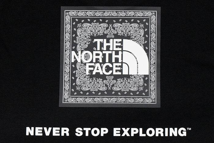 THE NORTH FACEザ ノースフェイスのTシャツ Bandana Square Logo15