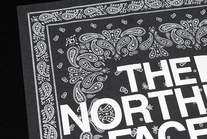 THE NORTH FACEザ ノースフェイスのTシャツ Bandana Square Logo16
