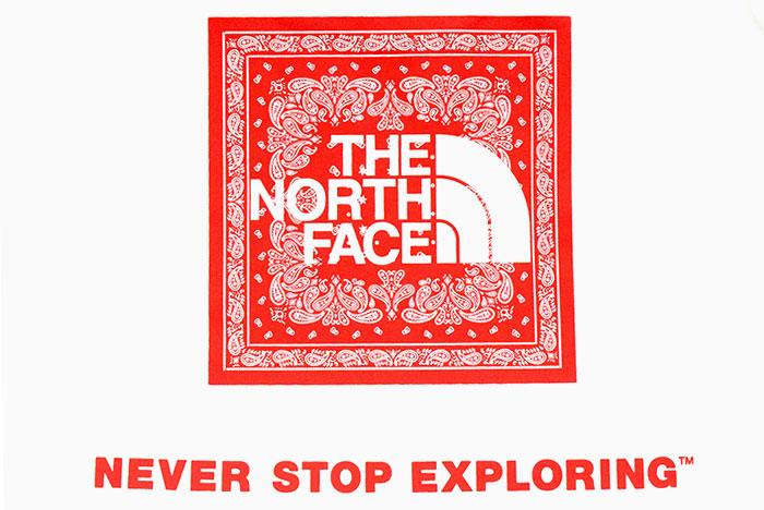 THE NORTH FACEザ ノースフェイスのTシャツ Bandana Square Logo17