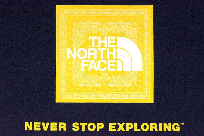 THE NORTH FACEザ ノースフェイスのTシャツ Bandana Square Logo18