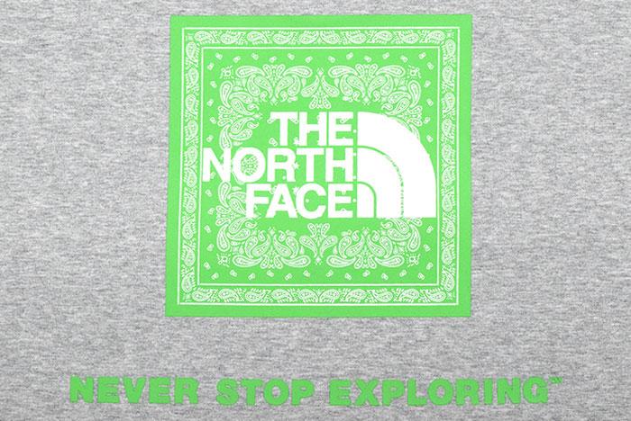 THE NORTH FACEザ ノースフェイスのTシャツ Bandana Square Logo19