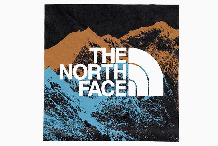 THE NORTH FACEザ ノースフェイスのTシャツ Digital Logo07