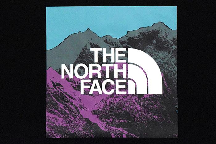 THE NORTH FACEザ ノースフェイスのTシャツ Digital Logo08