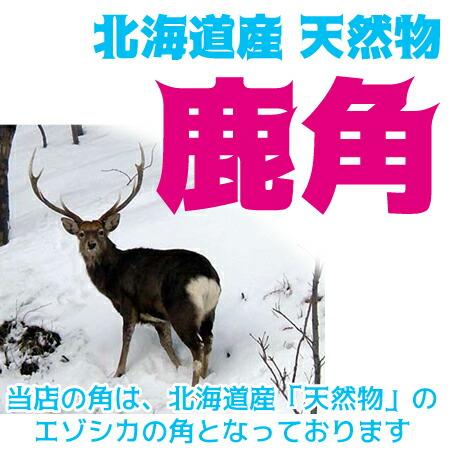 北海道産★鹿角