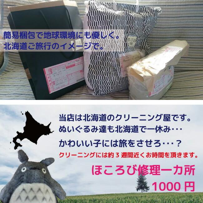 北海道に旅行に!