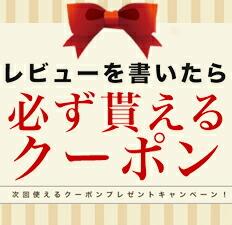 レビューを書いて500円OFFクーポン