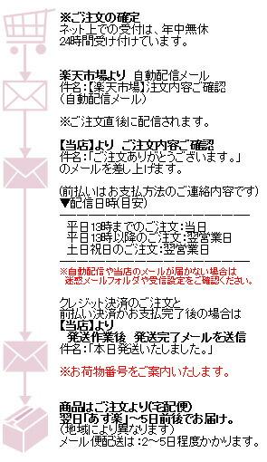 【詐欺メール】楽天カード ... - byte.sakura.ne.jp