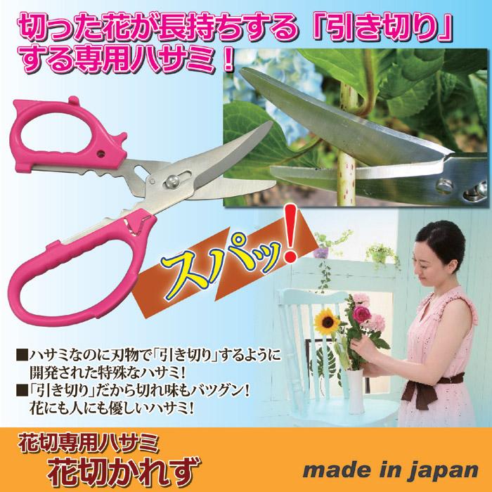切った花が長持ちする「引き切り」する専用ハサミ。ハサミなのに刃物で「引き切り」するように開発された特殊なハサミ。「引き切り」だから切れ味もバツグン!花にも人にも優しいハサミ。日本製。花切専用ハサミ「花切かれず」。