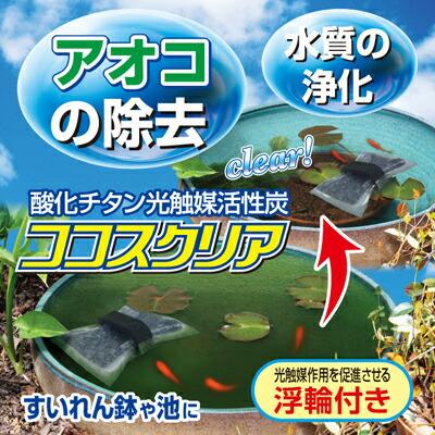ココスクリア3個入り(浮き輪付)