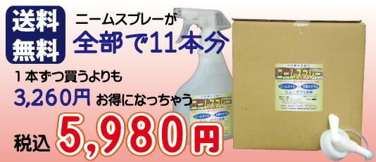 超お買い得!ニームスプレー5L本セットが送料無料で5980円