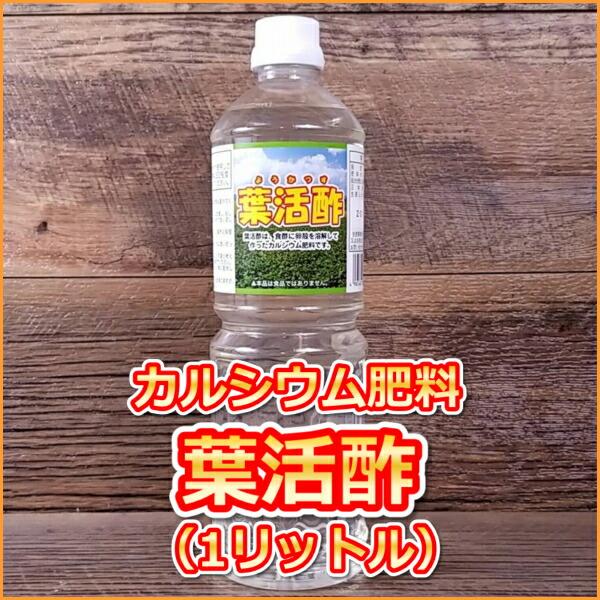 葉活酢(ようかつす)