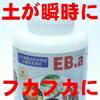 EB-aエコ