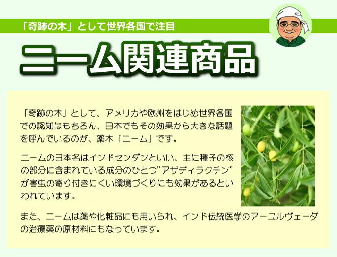 """ニーム関連商品 「奇跡の木」として世界各国で注目される薬木ニーム。「奇跡の木」として、アメリカや欧州をはじめ、世界各国での認知はもちろん、日本でもその効果から大きな話題を呼んでいるのが、薬木「ニーム」です。ニームの日本名はインドセンダンといい、主に種子(特に核の部分)に含まれている成分のひとつ""""アザディラクチン""""には害虫の寄り付きにくい環境作りにも効果があるといわれております。また、薬や化粧品にも用いられ、インド伝承医学のアユールヴェーダの治療薬の原材料にもなっています。"""