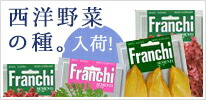 Franchi社 西洋野菜の種