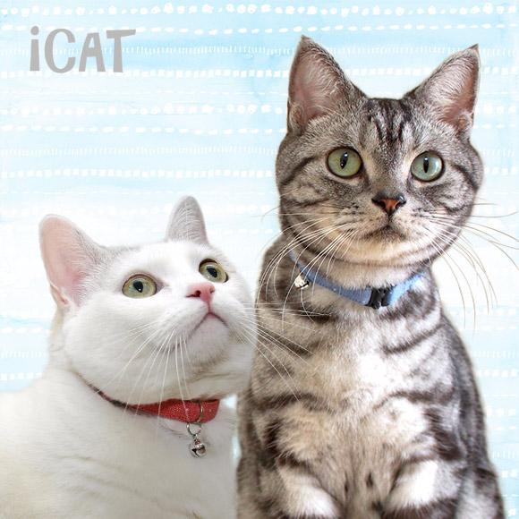 猫 首輪 iCat アイキャット カジュアルカラー デニムドット 猫の首輪 猫首輪 安全首輪