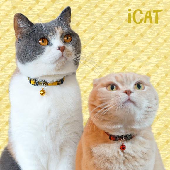 子猫 首輪 iCat アイキャット キティカラー ツイルチェック 猫の首輪 猫首輪 安全首輪