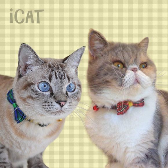 子猫 首輪 iCat アイキャット キティカラー ツイルチェック×チェックリボン 猫の首輪 猫首輪 安全首輪