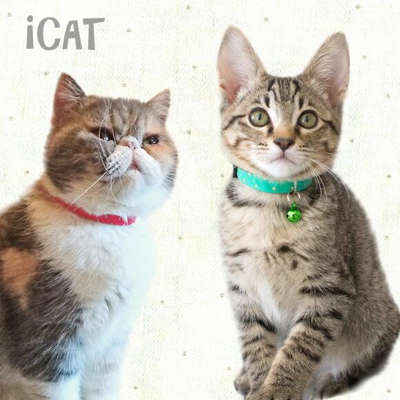子猫 首輪 iCat アイキャット キティカラー カラフルピンドット 猫の首輪 猫首輪 安全首輪