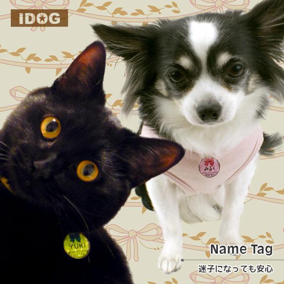 犬 猫 ペット 迷子札 iDog&iCat オリジナルネームタグ 迷子札 水玉りぼん ネームプレート 名札 ドッグタグ