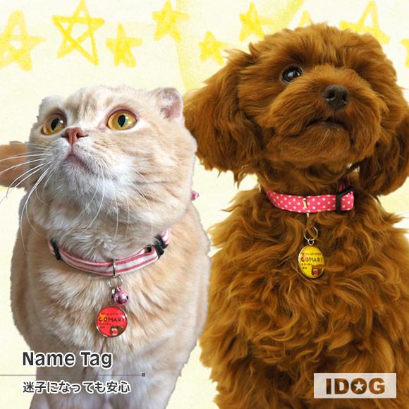 犬 猫 ペット 迷子札 iDog&iCatオリジナル ネームタグ 迷子札アングリーベア ネームプレート 名札 ドッグタグ