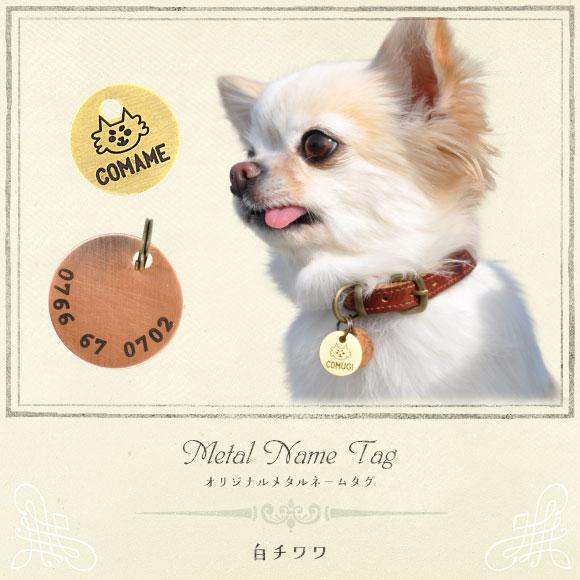 犬 猫 ペット 迷子札 iDog&iCat オリジナルメタルネームタグ 迷子札 白チワワ ネームプレート 名札 ドッグタグ
