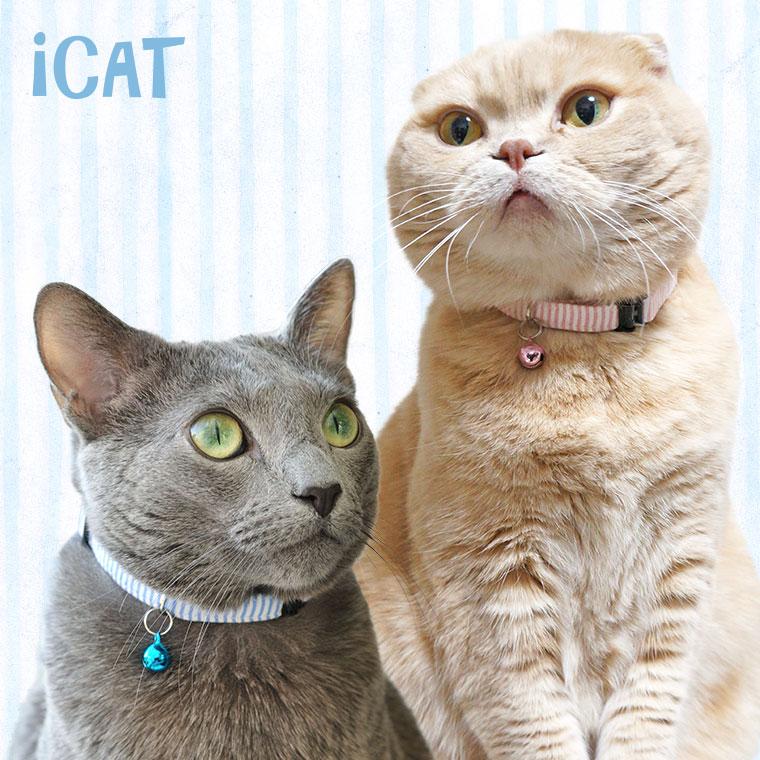 猫 首輪 iCat カジュアルカラー ピンボーダー 猫の首輪 猫首輪 安全首輪