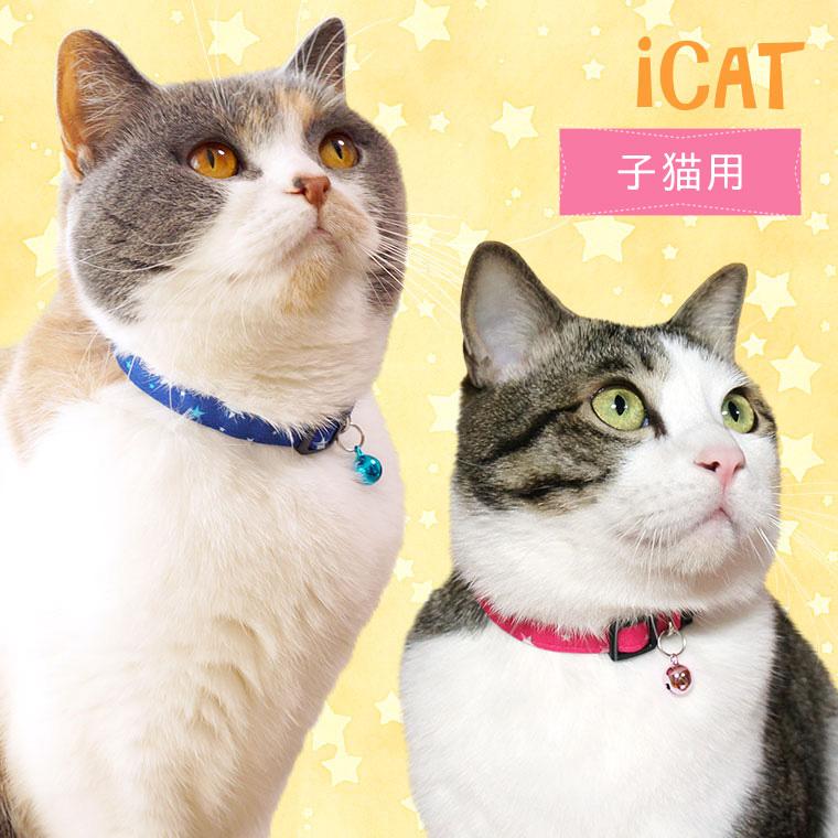 猫 首輪 iCat キティカラー ランダムスター 猫の首輪 猫首輪 安全首輪