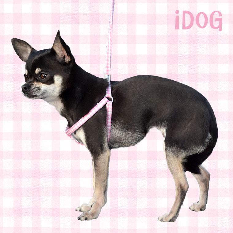 犬 ハーネス ワンタッチハーネス ビタミンギンガム 犬のハーネス