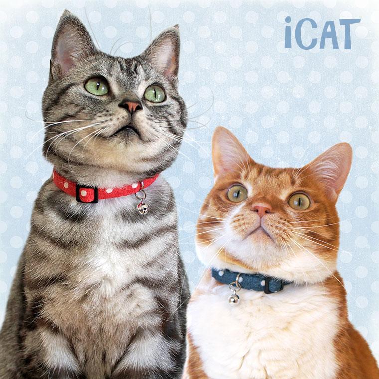 猫 首輪 カジュアルカラー 水玉ガーゼ 猫の首輪 猫首輪 安全首輪