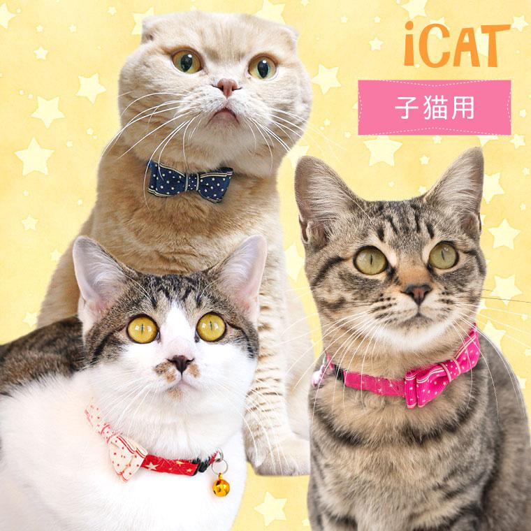 猫 首輪 iCat キティカラー ランダムスター×スターリボン 猫の首輪 猫首輪 安全首輪