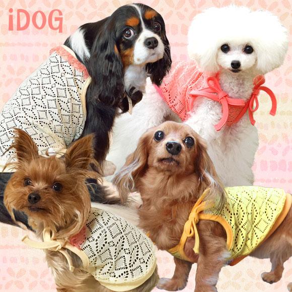 iDog アイドッグ リボン結びのレースキャミ[犬の服のiDog]
