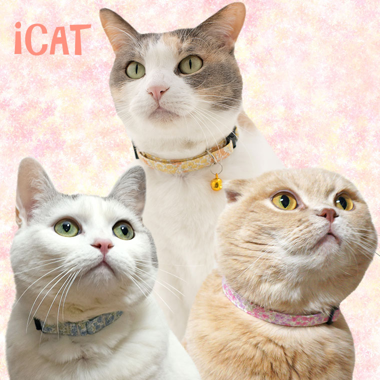 猫 首輪 iCat カジュアルカラー 小花柄 猫の首輪 猫首輪 安全首輪
