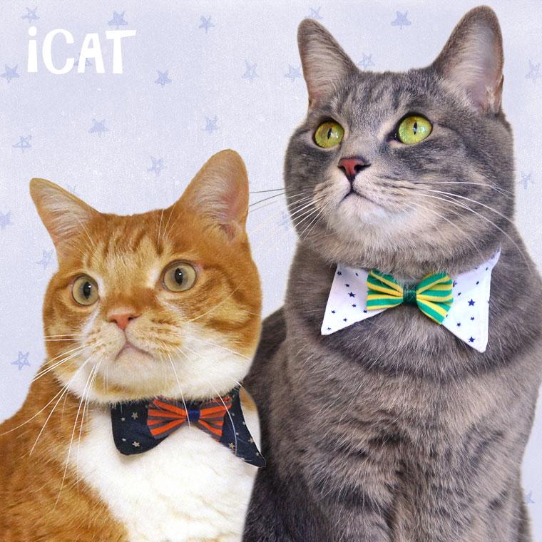 猫 首輪 iCat デザインカラー スターボーダーリボン 猫の首輪 猫首輪 安全首輪