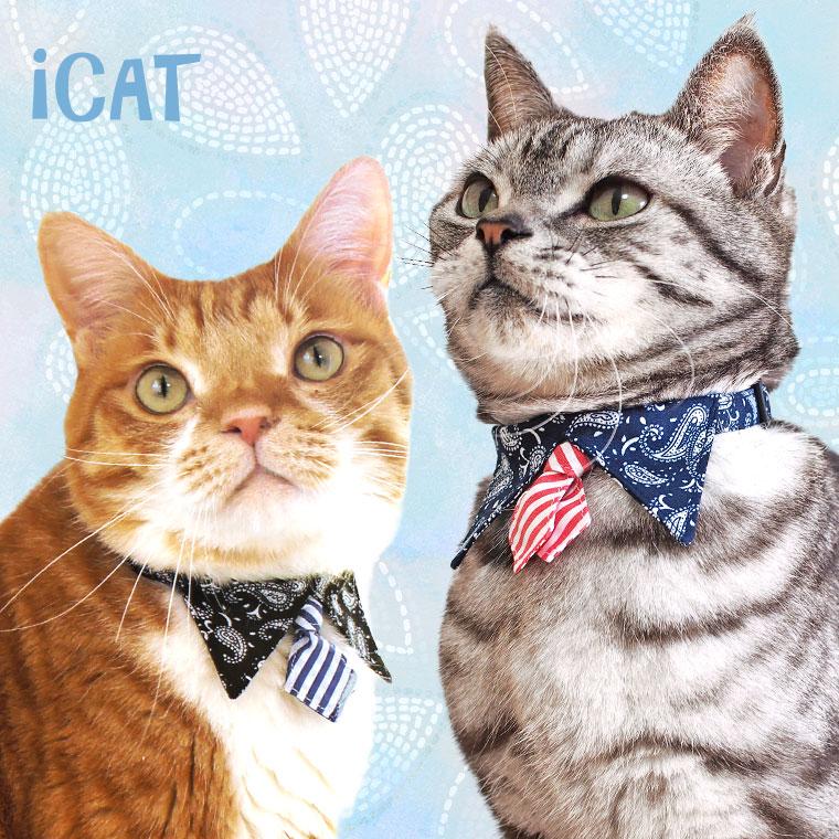 猫 首輪 iCat デザインカラー ペイズリー×ボーダータイ 猫の首輪 猫首輪 安全首輪