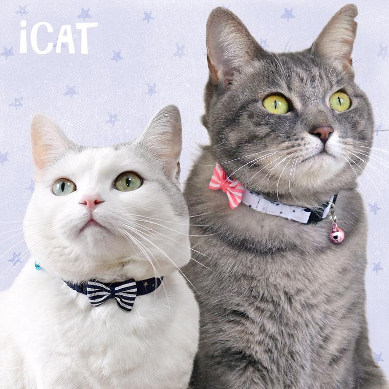 猫 首輪 iCat キティカラー スター×ボーダーリボン 猫の首輪 猫首輪 安全首輪