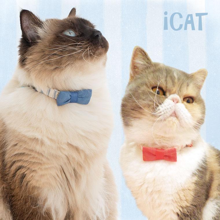 猫 首輪 iCat キティカラー ボーダーガーゼ×デニムリボン 猫の首輪 猫首輪 安全首輪