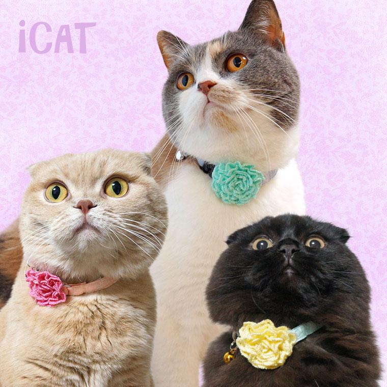 猫 首輪 iCat キティカラー 小花レース×ニットフラワー 猫の首輪 猫首輪 安全首輪