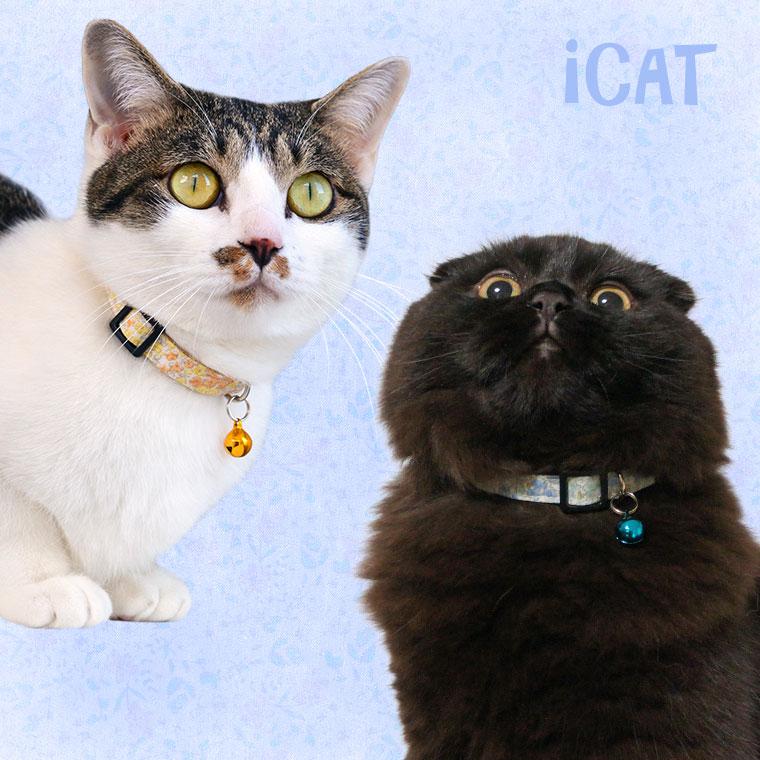 猫 首輪 iCat キティカラー 小花柄 猫の首輪 猫首輪 安全首輪