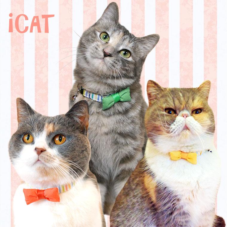 猫 首輪 iCat キティカラー カラフルストライプ×リボン 猫の首輪 猫首輪 安全首輪