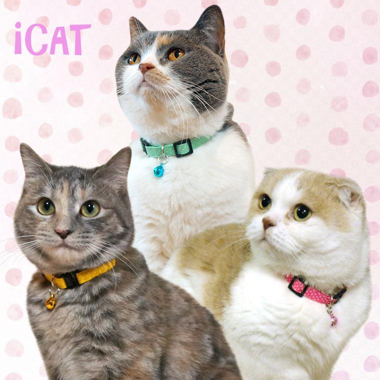 猫 首輪 iCat キティカラー ピンドット 猫の首輪 猫首輪 安全首輪