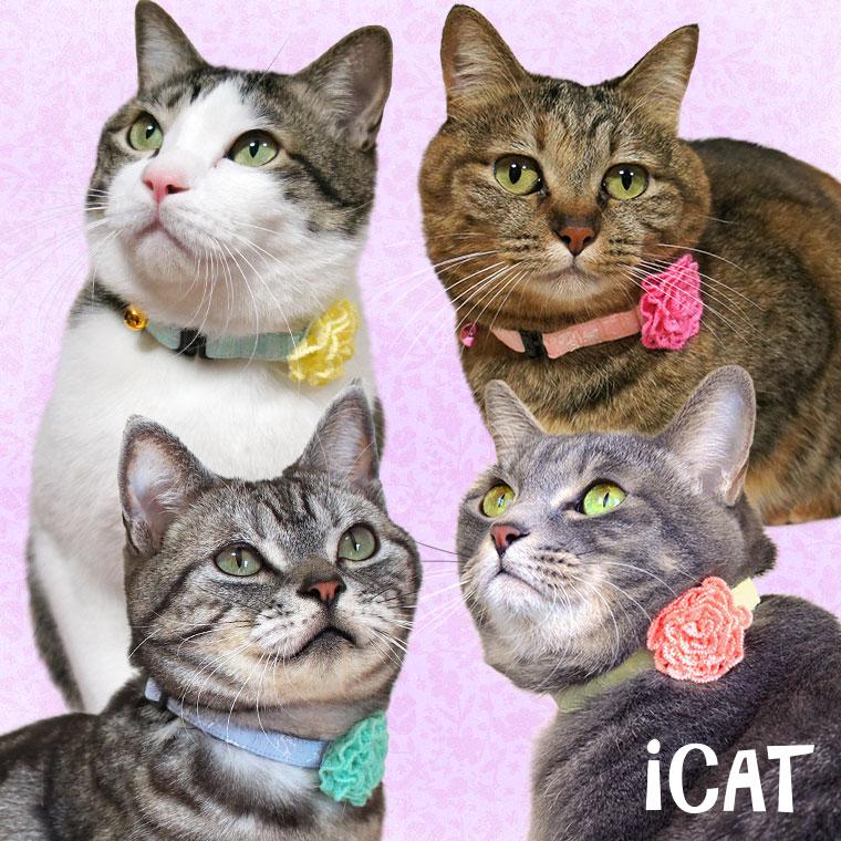 猫 首輪 iCat ラブリーカラー 小花レース×ニットフラワー 猫の首輪 猫首輪 安全首輪