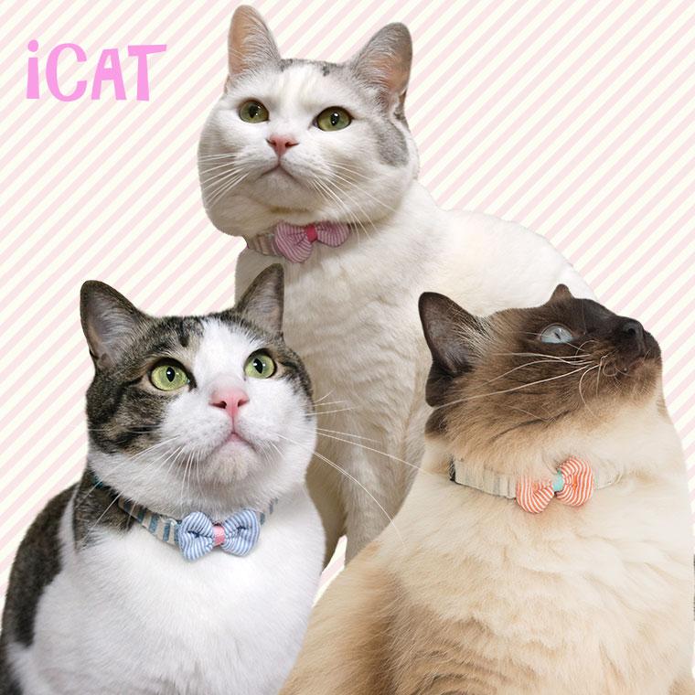 猫 首輪 iCat ラブリーカラー かすれボーダー×ピンボーダーリボン 猫の首輪 猫首輪 安全首輪