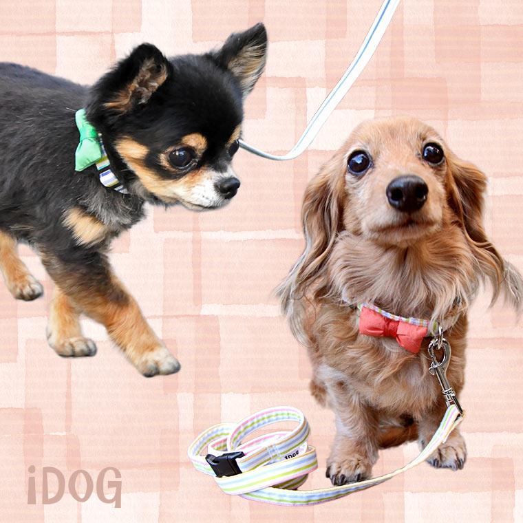 犬 首輪 リード iDog アイドッグ リード・カラーセット カラフルストライプ×リボン 犬の首輪 犬のリード