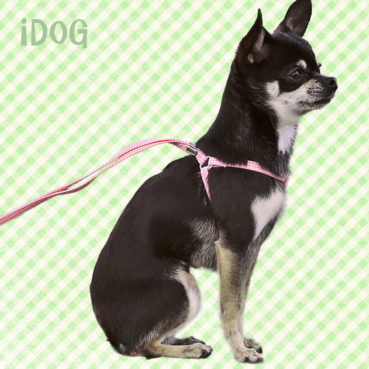 犬 ハーネス iDog アイドッグ ワンタッチハーネス ギンガムチェック 犬のハーネス