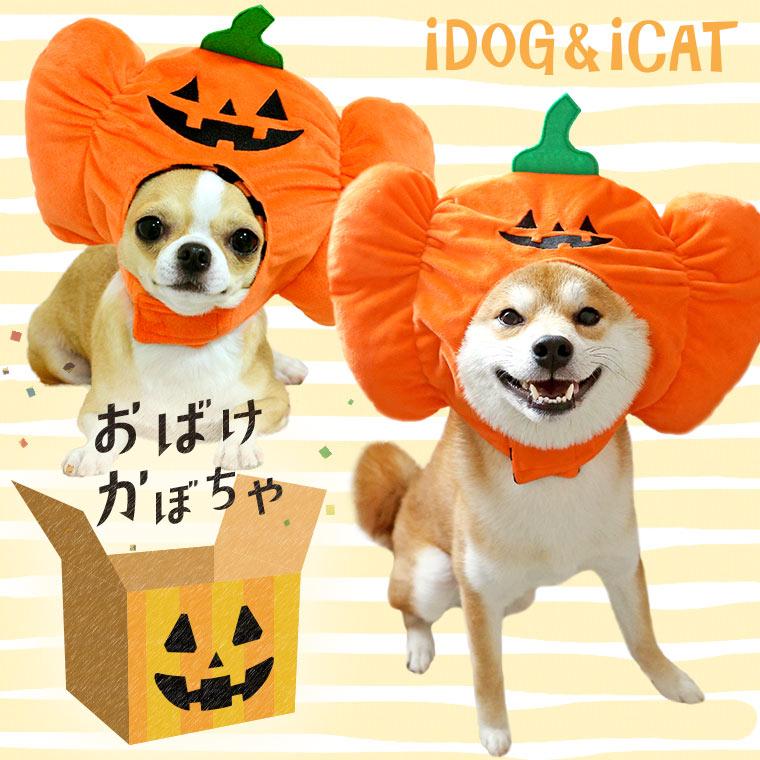 耳 汚れ防止 ハロウィン スヌード 犬 服 iDog 変身かぶりものスヌード おばけかぼちゃ アイドッグ かぶりもの 帽子 犬の服 犬服